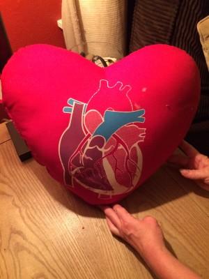 Hosty's Heart Pillow