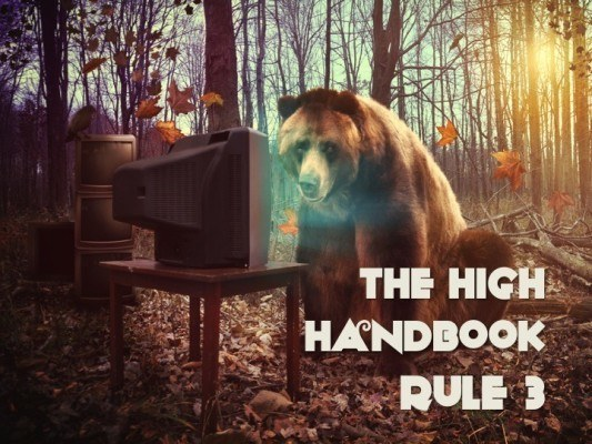 The High Handbook: Rule 3, Being With The Bear