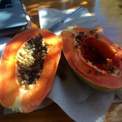 Vegan Type 1 Diabetes Management -- Breakfast with papaya